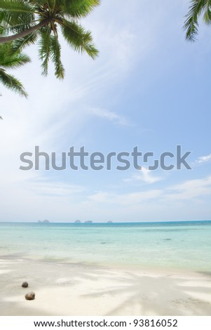 fragment like View of nice tropical beach  with some palms - stock photo