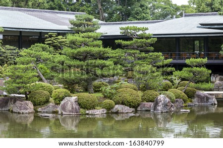 Fragment of a Japanese garden with artificially shaped pine trees