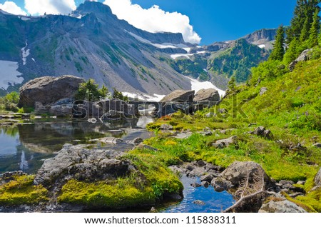 Fragment of a trail in Mount Baker Visitor Center, WA, USA. - stock photo