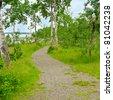 Fragment of fantastic trail at Green Lake in British Columbia, Canada. - stock photo