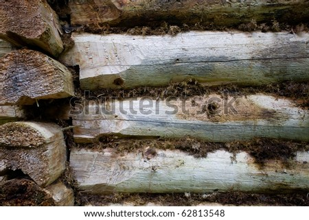 Fragment of old wall of the house of timber. Ancient way of construction of buildings without nails. Between the logs is moss. - stock photo