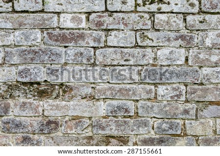 Fragment of old weathered mossy gray brick wall background - stock photo
