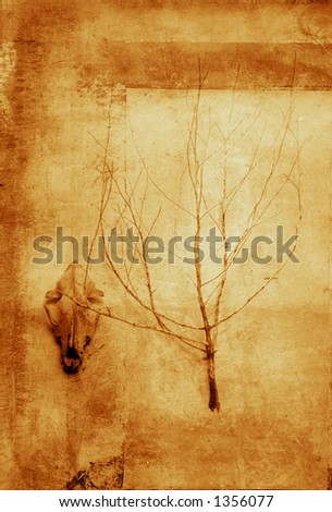 Fragments From Being. Coyote skull and plant skeleton.Texture and grain. - stock photo