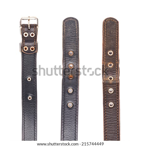 Fragments of dog-collar isolated over the white background - stock photo