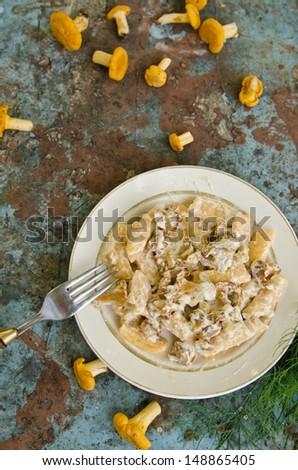 fragrant dumplings with wild chanterelle - stock photo