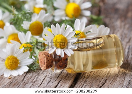 fragrant oil in a glass bottle on the background of camomile flowers macro on wooden table horizontal  - stock photo