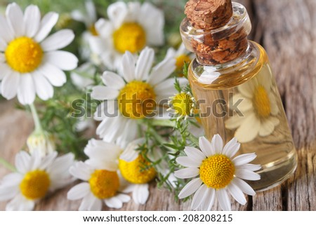 fragrant oil of chamomile in glass bottle macro on wooden table horizontal  - stock photo
