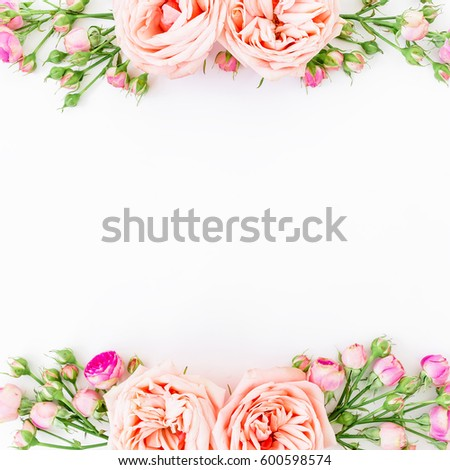 Frame Background Frame Pink Roses Isolated Stock Photo (Royalty Free ...