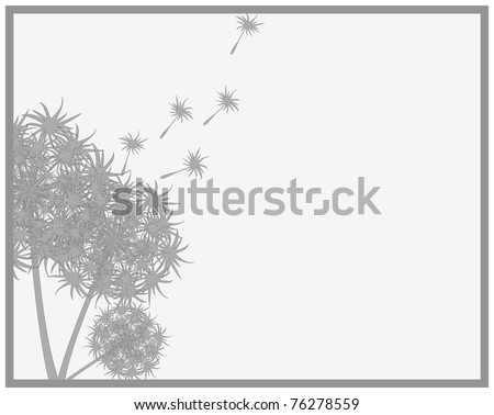 Frame consisting of the outline of a bouquet of dandelions are losing their seeds - stock photo