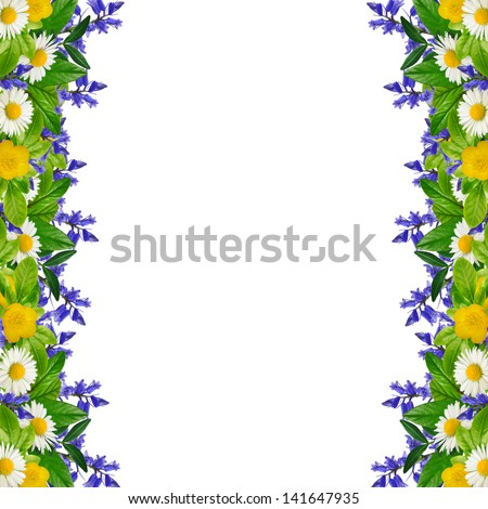 Frame: different colorful flowers on the white background - stock photo