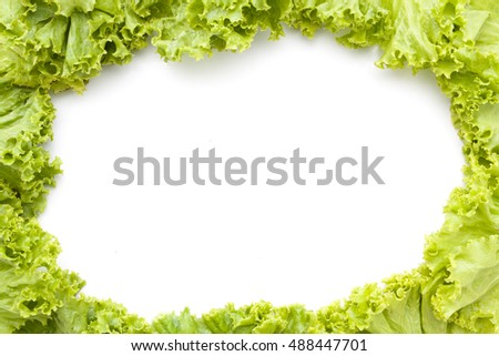 Frame fresh lettuce leaves close up isolated on white background