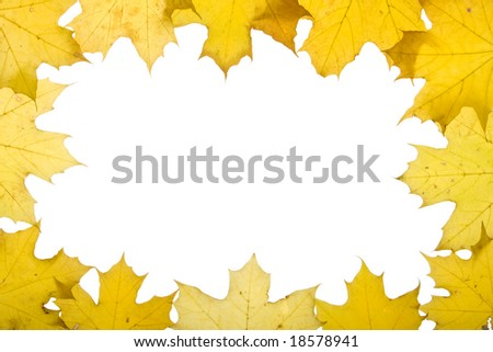 Frame from autumn leaves on a white background. Close-up.