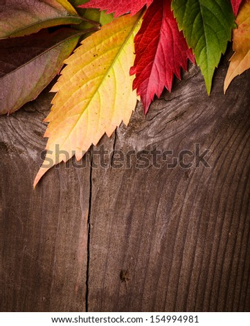 Frame from autumn leaves on the wooden background - stock photo