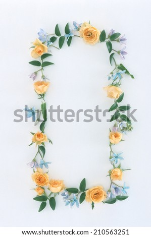 frame from colorful summer flowers - stock photo