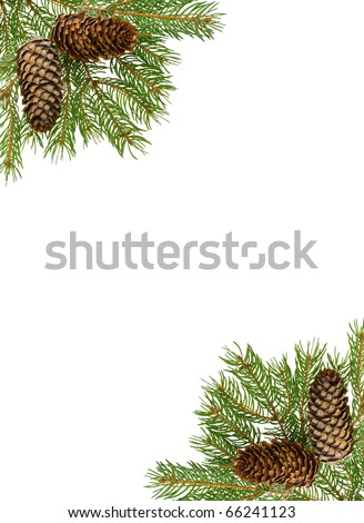 frame from fir tree branch and cones - stock photo