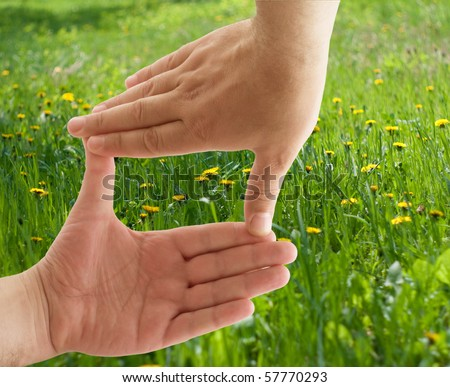 Frame from human hands with flower in the middle of it. Green grass is background