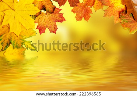 Frame from vivid colorful autumn leaves with water reflection, natural seasonal background - stock photo