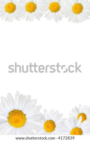 Frame made from daisy over yellow background