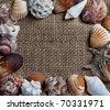 Frame made of various seashells and starfish - stock photo