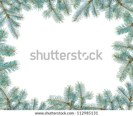 Frame made with blue spruce twigs isolated on white, copyspaced - stock photo