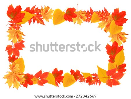 Frame of autumn leaves isolated on white - stock photo