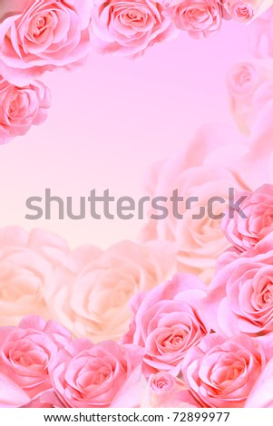 Frame of beautiful pink roses - stock photo