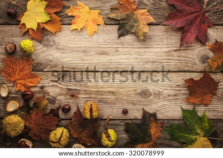 Frame of chestnuts and autumnal maple leaves  with film filter effect horizontal - stock photo
