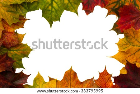frame of colorful maple leaves