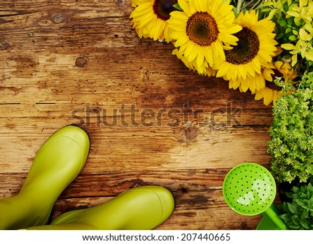Frame of garden tools and flowers. Top view.  - stock photo