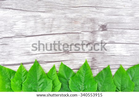 Frame of Green leaf on wood background - stock photo
