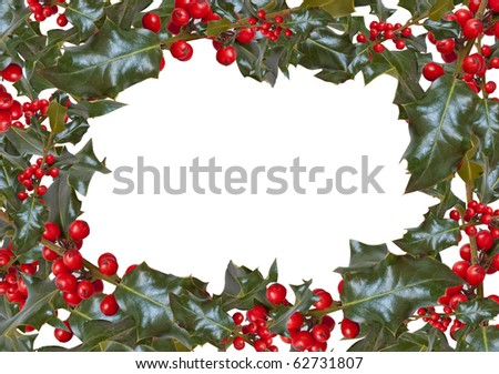 Frame of Holly on white with copyspace - stock photo