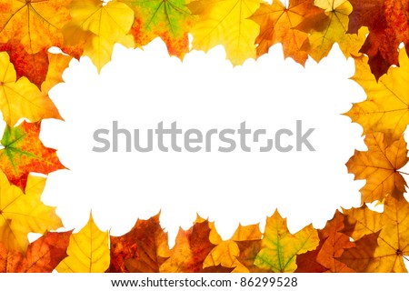 Frame of maple autumnal leaves. Isolated on white.