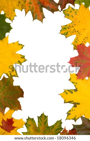 Frame of maple leaves over white background - stock photo