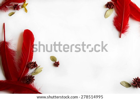 Frame of red feathers on isolated background