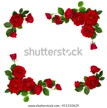 Frame of red roses (shrub rose) on a white background with space for text. Flat lay - stock photo