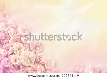 Frame of roses. Partial blur. Special toning. - stock photo