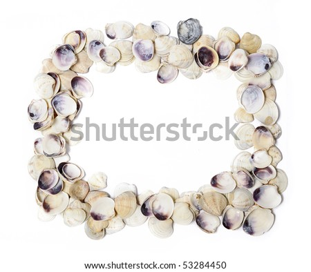 Frame of shells isolated over white - stock photo