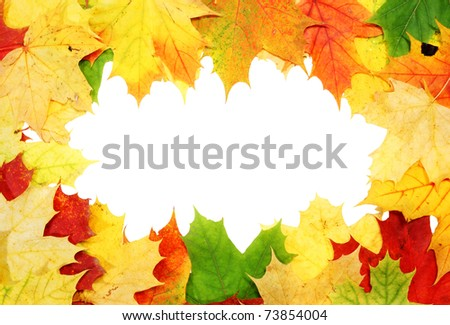 Frame with colored autumn maple leaves - stock photo