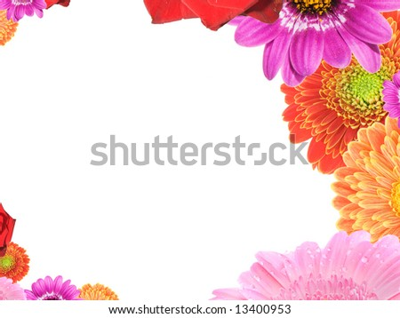 frame with different colorful flowers on white background - stock photo