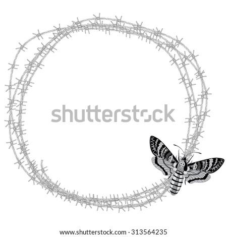 frame with flowers of roses in black and white colors - stock photo