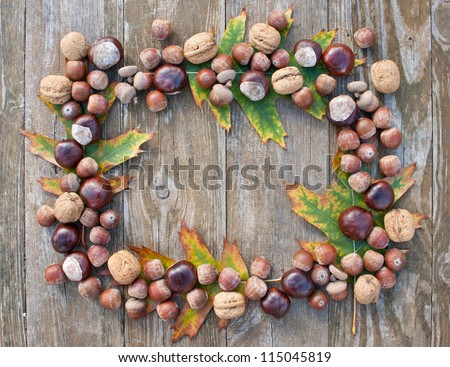 frame with nuts, acorns, chestnuts/autumn/fruits - stock photo