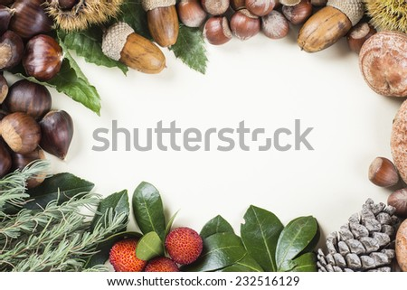 Frame with space for text, with natural autumn and Christmas items fruits and nuts - stock photo