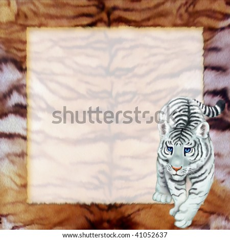 frame with white tiger - stock photo