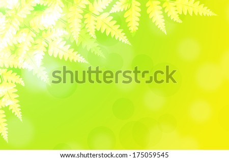 Frames Leaves on the background with bright colors