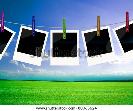 frames with field of green fresh grass under blue sky