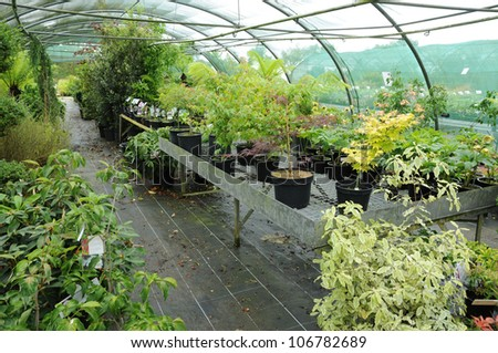 France, a plant nursery in Brittany