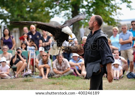 France, August 26, 2015:   American Eagle during  flight bird show at Shinon castle.