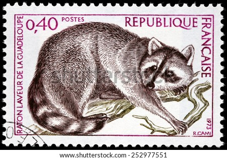 FRANCE - CIRCA 1973: A stamp printed by FRANCE shows The Guadeloupe raccoon (Procyon lotor minor) - subspecies of the common raccoon, circa 1973 - stock photo