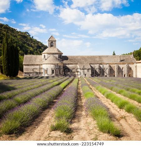 France, Provence Region, Senanque Abbey. Lavander field in summer season. - stock photo