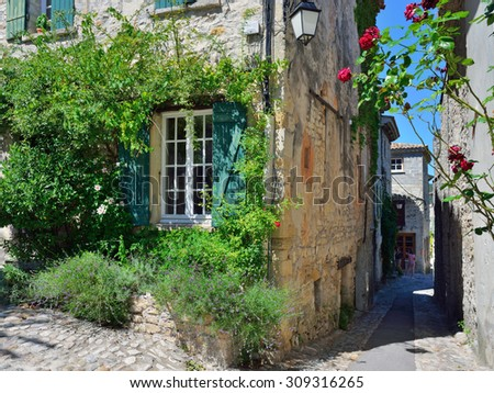 France, Provence. Vaison la Romaine. Typical medieval street between houses decorated with green wild vines - stock photo